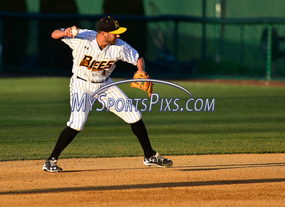 4/23/2016 Mike Orazzi | Staff New Britain Bees's Steve Carrillo (4) Saturday night.