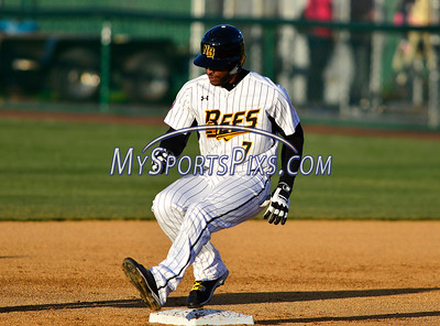 4/23/2016 Mike Orazzi | Staff New Britain Bees's Greg Golson (7) Saturday night.