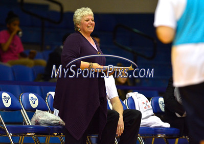 2/20/2016 Mike Orazzi | Staff Rosemary Padin Interval House Development Director during the the 7th Annual Men Make a Difference, Men Against Domestic Violence Celebrity Half-Time Basketball Game in Detrick Gymnasium at CCSU on Saturday.