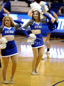 2/20/2016 Mike Orazzi | Staff Members of the Central Connecticut Cheerleading Squad during Saturday's basketball game with Wagner in Detrick Gymnasium at CCSU on Saturday.